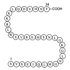 Parathyroid hormone (1-34) (human)