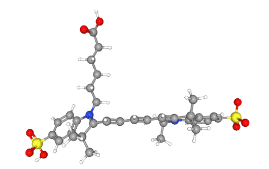 CY5荧光染料实验